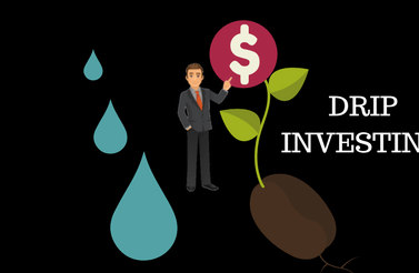 Here's how to spot the best stocks for DRIP investing