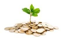 Growing Money Stock Photo