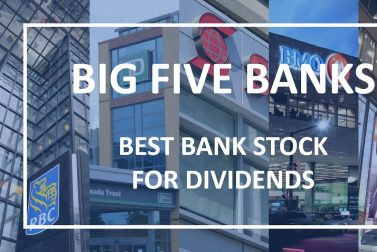 The best bank stocks for dividends: knowing the big five
