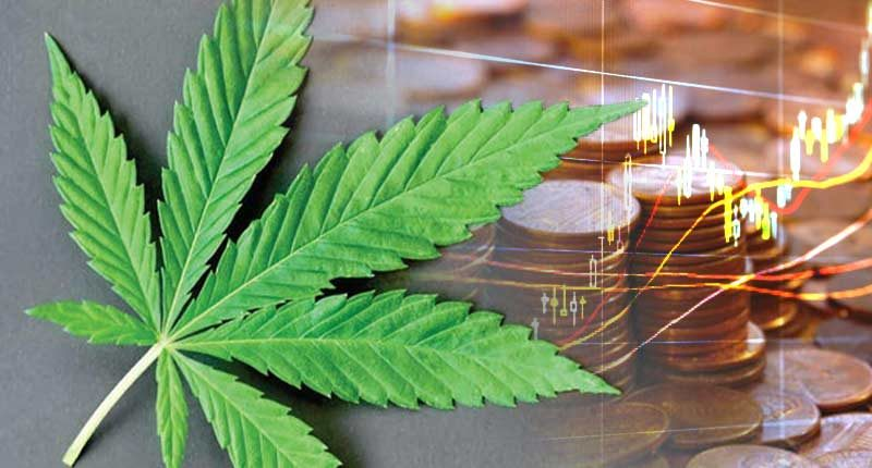 best Canadian cannabis penny stocks