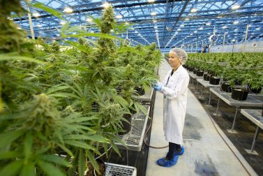 Over 30 premium products sold across 9 provinces bolster Hexo Corp.'s prospects
