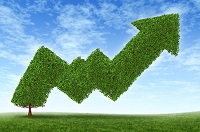 investing-in-blue-chip-stocks