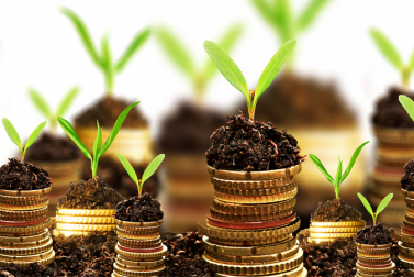 Here's how to find the best growing stocks for maximum portfolio returns